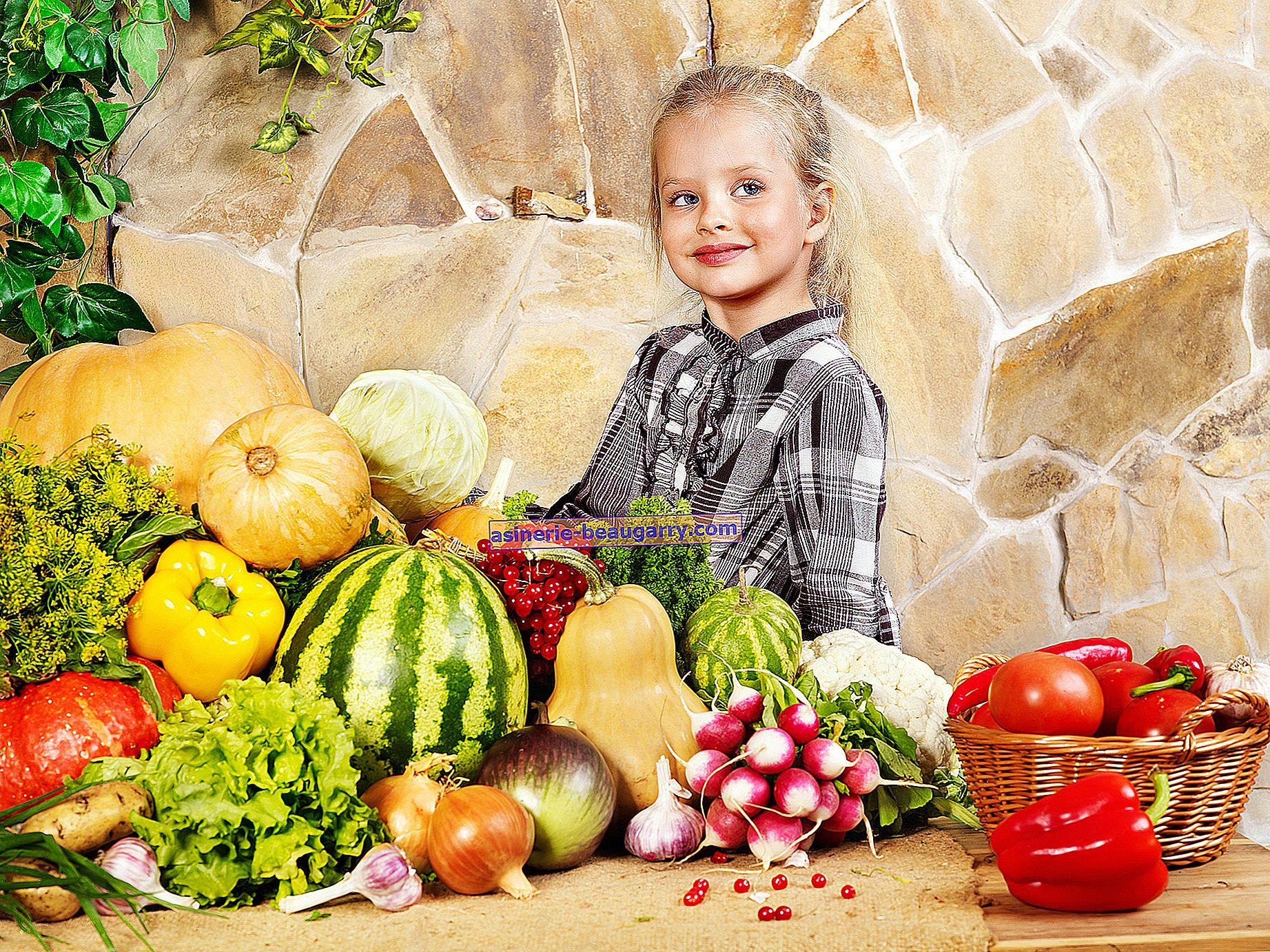 Principes de nutrition équilibrée et saine
